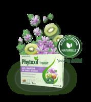 Phytoxil Transit Comprimés B/20 à DIGNE LES BAINS