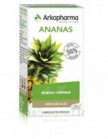 Arkogélules Ananas Gélules Fl/45 à DIGNE LES BAINS