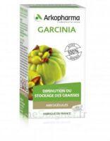 Arkogélules Garcinia Gélules Fl/45 à DIGNE LES BAINS