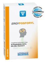 Ergyfosforyl Caps B/60 à DIGNE LES BAINS