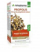 Arkogélules Propolis Bio Gélules Fl/45 à DIGNE LES BAINS