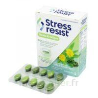Stress Resist Comprimés Stress & Fatigue B/30 à DIGNE LES BAINS
