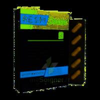 Synactifs Respigreen Bio Gélules B/10 à DIGNE LES BAINS