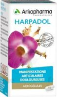 Arkogelules Harpagophyton Gélules Fl/150 à DIGNE LES BAINS