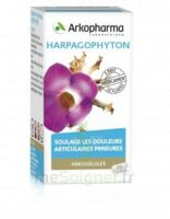 Arkogelules Harpagophyton Gélules Fl/45 à DIGNE LES BAINS