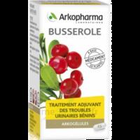 Arkogelules Busserole Gélules Fl/45 à DIGNE LES BAINS