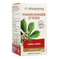 Arkogelules Marronnier D'inde Gélules Fl/150 à DIGNE LES BAINS