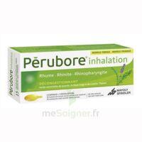 Perubore Caps Inhalation Par Vapeur Inhalation Plq/15 à DIGNE LES BAINS