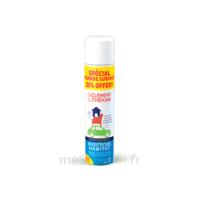 Clément Thékan Solution Insecticide Habitat Spray Fogger/300ml à DIGNE LES BAINS
