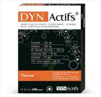 Synactifs Dynactifs Gélules B/30 à DIGNE LES BAINS