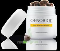 Oenobiol Solaire Intensif Caps Peau Normale Pot/30 à DIGNE LES BAINS