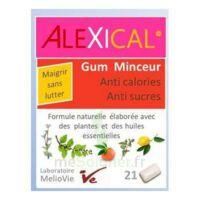 Alexical Gum Minceur Anti Calories Anti Sucres B/21 à DIGNE LES BAINS