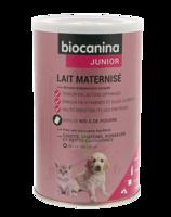 Biocanina Lait Poudre Maternisé B/400g à DIGNE LES BAINS