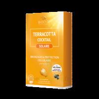 Terracotta Cocktail Solaire Comprimés B/30 à DIGNE LES BAINS