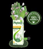 Phytoxil Toux Sans Sucre Sirop Adulte Enfant +2 Ans Fl/120ml à DIGNE LES BAINS