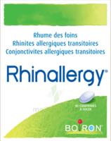 Boiron Rhinallergy Comprimés B/40 à DIGNE LES BAINS