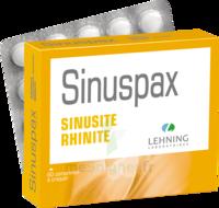 Lehning Sinuspax Comprimés à Croquer 3plq/20 à DIGNE LES BAINS